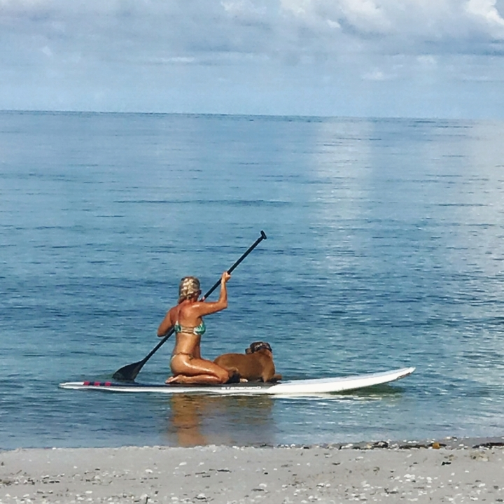 ford - paddle boarding